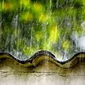 The IHB Guide: Monsoon is here, time to get responsible with rain water harvesting!